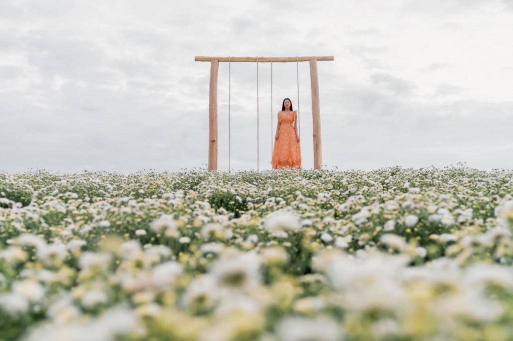 """ดอกไม้บานสะพรั่ง """"สิงห์ปาร์ค เชียงราย"""" เปิดตัวทุ่งดอกไม้โซนใหม่ """"Flower Bloom"""" ต้อนรับนักท่องเที่ยว"""