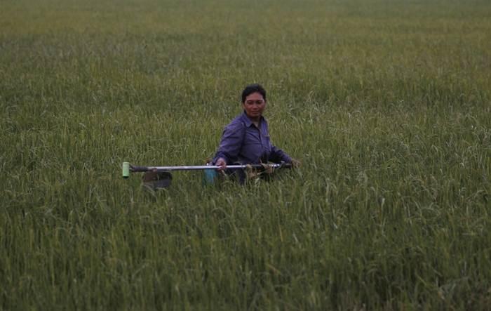 'จีน-ไทย' ลงนามความร่วมมือการเกษตรภายใต้กองทุนพิเศษล้านช้าง-แม่โขง