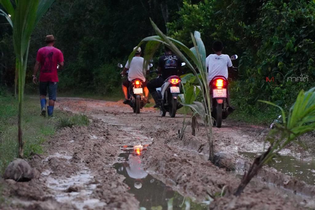 ชาวบ้านท่ามะเดื่อสุดทนปลูกต้นมะพร้าวบนถนน ประชดผู้รับผิดชอบไร้การเหลียวแล