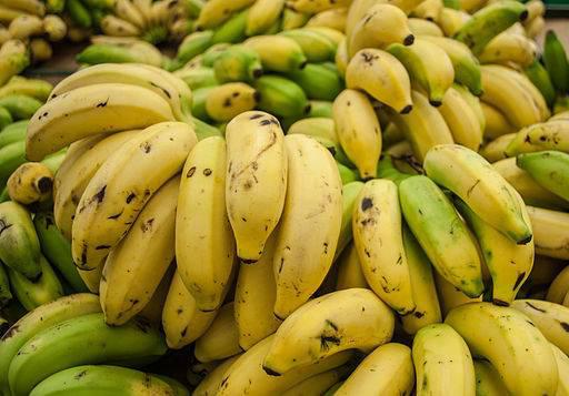 กล้วยน้ำว้า...ถึงเบื่อก็ต้องกิน! / พลโทนายแพทย์ สมศักดิ์ เถกิงเกียรติ