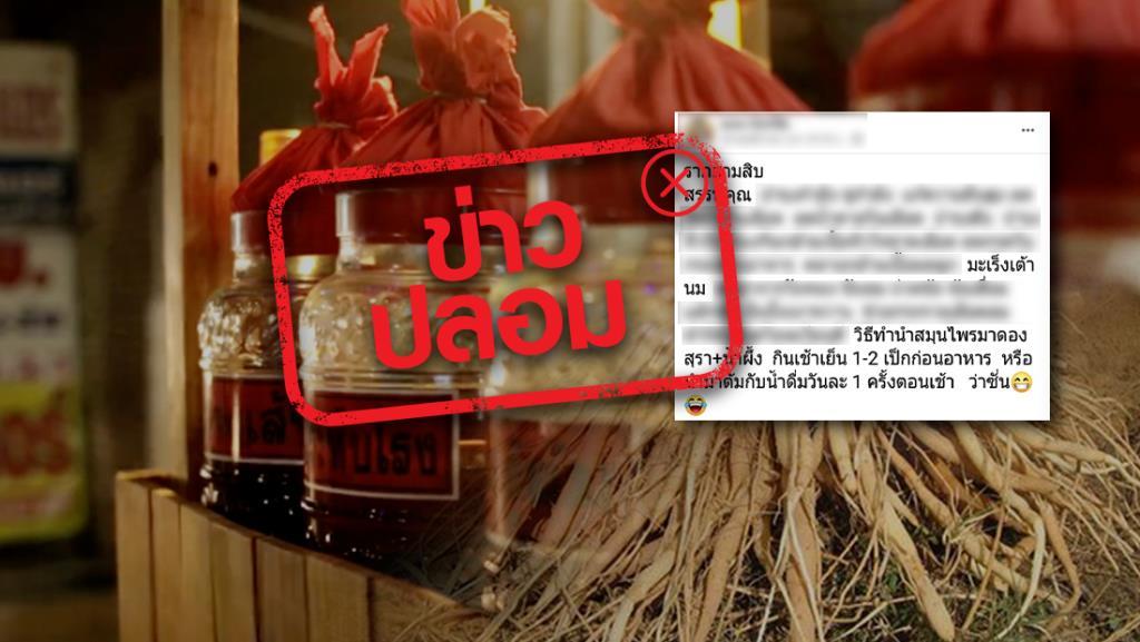 ข่าวปลอม! รากสามสิบดองเหล้ากับน้ำผึ้ง ช่วยรักษามะเร็งเต้านม