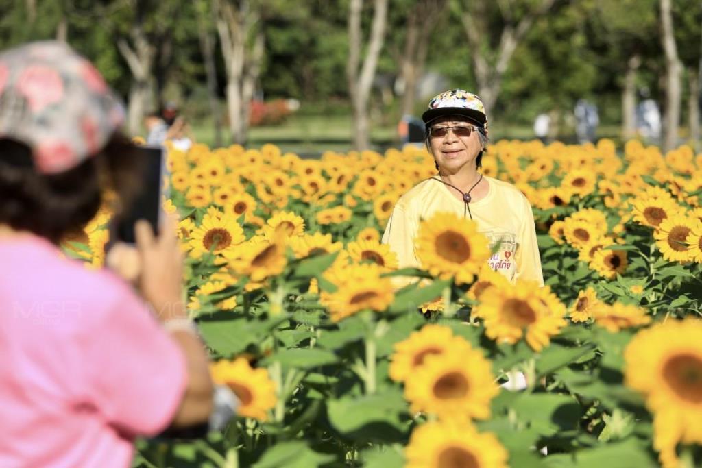 """กทม. ชวนเที่ยว """"เทศกาลชมดอกไม้กรุงเทพฯ"""" (Bangkok Flora Festival) 5 สวนสาธารณะใจกลางกรุง"""