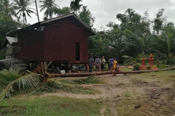 สุราษฎร์ฯอ่วมน้ำท่วมหลายจุดตะลึงลมพัดต้นมะพร้าวตกใส่บ้านคน