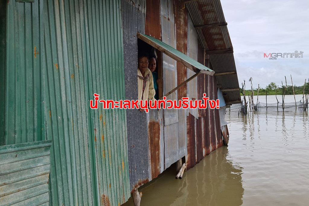 น้ำทะเลสาบสงขลาหนุนท่วมริมฝั่ง 2 ผัวเมียติดเกาะนาน 5 วัน บ้านถูกน้ำท่วมออกมาไม่ได้