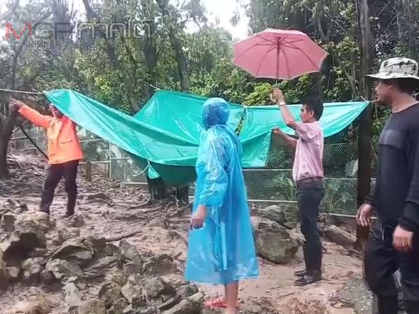 จนท.สวนสัตว์สงขลาเฝ้าดูแลสัตว์อย่างใกล้ชิดในช่วงที่ฝนตกหนักป้องกันสัตว์ล้มป่วย