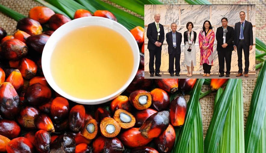 GIZ จับมือภาคธุรกิจ เสนอแนวทางยกระดับตลาดน้ำมันปาล์มไทยสู่วิถียั่งยืน