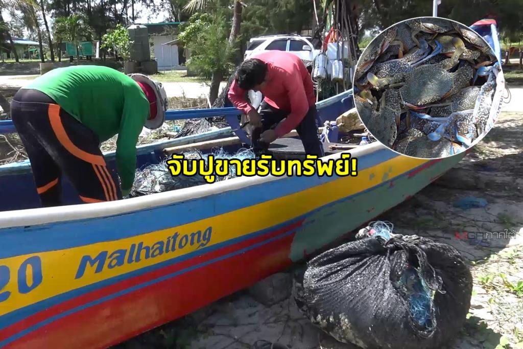 คลื่นลมสงบชาวประมงสงขลาออกเรืออีกครั้ง จับปูวันเดียวขายได้นับหมื่นบาท