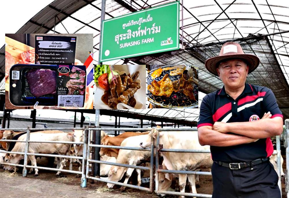 """(ชมคลิป) """"สุระสิงห์ฟาร์ม"""" โคขุนอีแวปแห่งแรก ผลิตเนื้อพรีเมี่ยมสัญชาติไทย ราคาเบาเข้าถึงได้ง่าย"""
