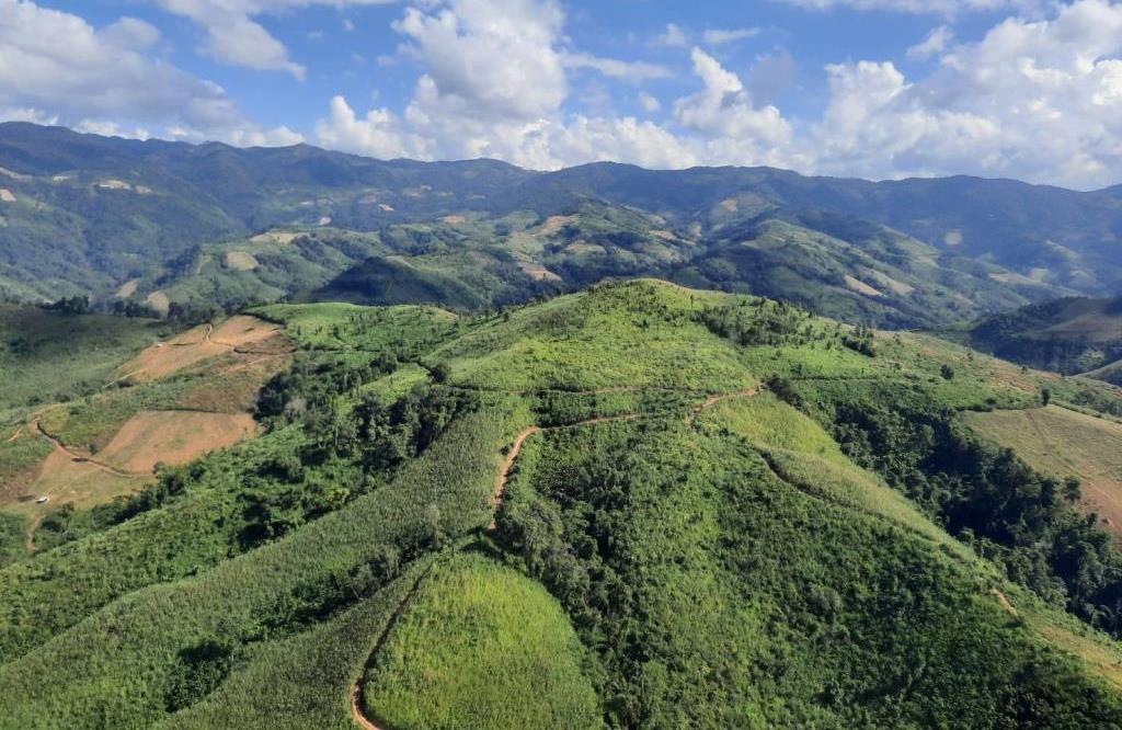 ป่าไม้-กองทัพภาค3เตรียมลุยลดเชื้อเพลิงบรรเทาไฟป่าและฝุ่นควันภาคเหนือวางแผนชิงเก็บ500ตันชิงเผา1.4ล้านไร่