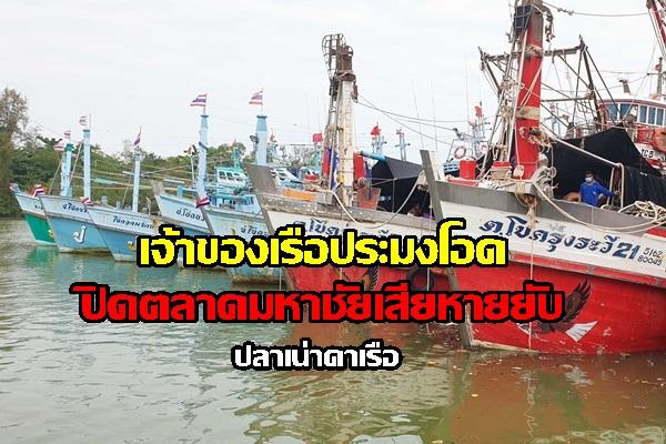 เจ้าของเรือประมงชุมพรโอด ตลาดกลางมหาชัยปิด ส่งสินค้าไม่ได้ ปลาเน่าคาเรือ เสียหายหลายล้าน