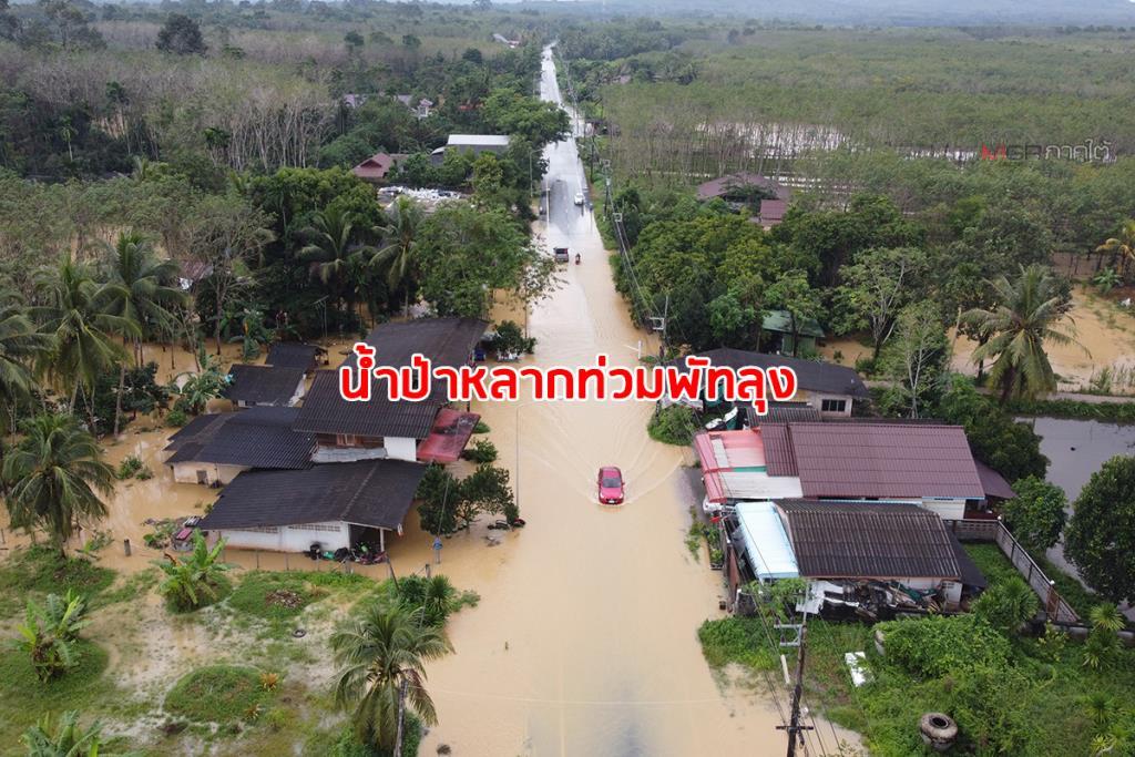 พัทลุงฝนตกหนักน้ำป่าหลากท่วม 3 หมู่บ้านกว่า 500 ครอบครัวได้รับผลกระทบแล้ว