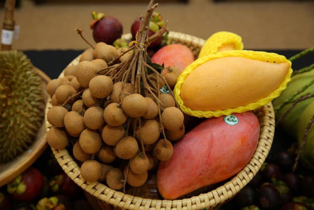 """""""พาณิชย์""""ดึง """"เน็ตไอดอล-อินฟลูเอนเซอร์"""" ร่วมจัดกิจกรรมโปรโมตผลไม้ไทยในจีน"""