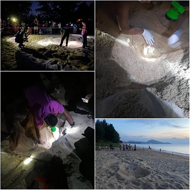 กั้นพื้นที่และเตรียมพัฒนาพื้นที่ เพื่อจัดตั้งศูนย์เฝ้าระวังและติดตามสถานการณ์เต่ามะเฟือง ณ บริเวณหาดไม้ขาว