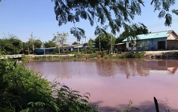 ปธ.ชุมชนประมงพื้นบ้านเรือเล็กโวยบริษัทรับเหมาเอกชนปล่อยน้ำขุ่นปนสีแดงลงอ่าวตากวน