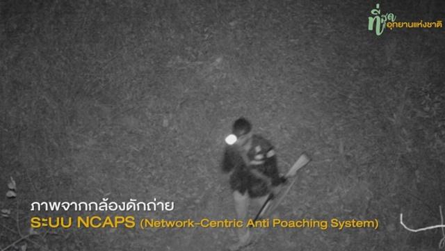 """""""14 มกราคม"""" วันอนุรักษ์ทรัพยากรป่าไม้ของชาติ ชมคลิปภารกิจผู้พิทักษ์ป่า ใช้กล้องดักถ่าย NCAPs จับก่อนตัด"""