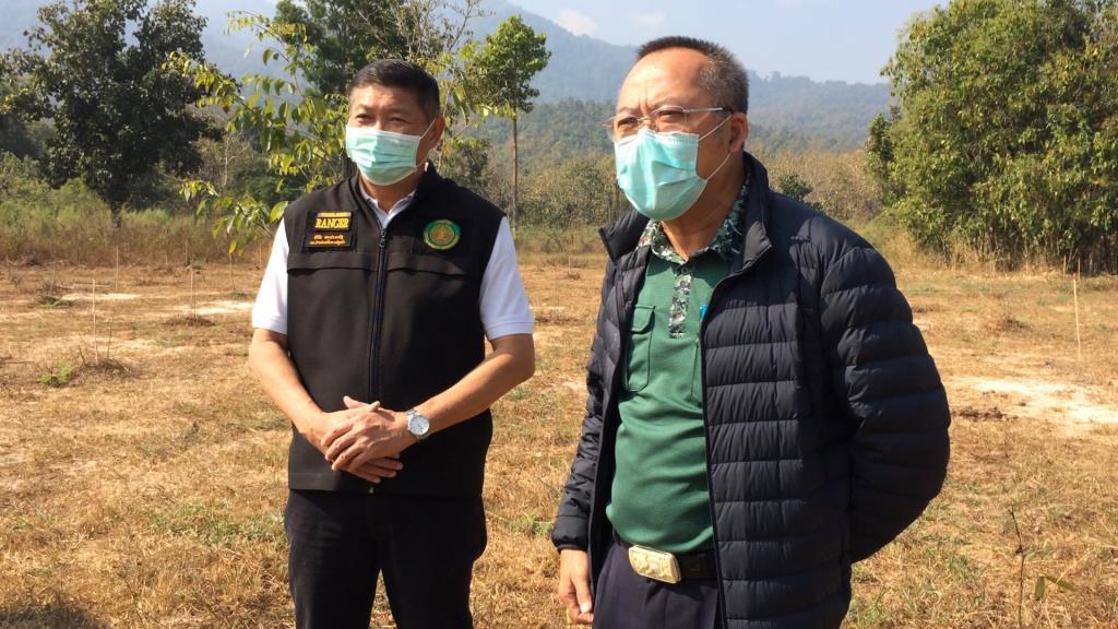 """จนท.ป่าไม้เชียงใหม่ตรวจสอบทันควัน พื้นที่ """"ลุงป้อม"""" ปลูกป่าห้วยตึงเฒ่า ยัน 47 ต้น VIP ยังอยู่ครบ ไม่ตาย-แค่ผลัดใบช่วงแล้ง"""
