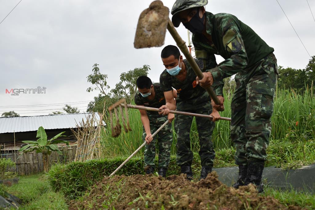 """""""ทหารพันธุ์ดี"""" ทำเกษตรผสมผสานช่วงวิกฤตโควิด-19 ระบาด ผลผลิตนำขายชาวบ้านราคาถูก"""