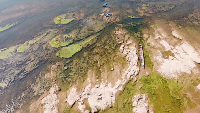 ชาวหนองคายผวา! น้ำโขงลดฮวบตะไคร่น้ำโผล่กระทบจับปลาในแม่น้ำ-ปลากระชังน็อกตาย