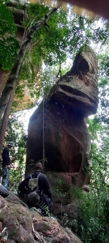 ภาพจากเพจ อุทยานแห่งชาติภูลังกา จังหวัดนครพนม - Phulangka National Park Thailand