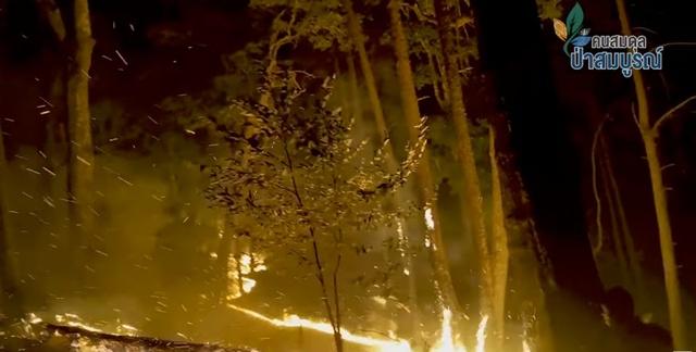 กรมอุทยานฯ ผนึกภาคีเครือข่ายเป้องกันและรับมือไฟป่า ณ อุทยานแห่งชาติศรีลานนา