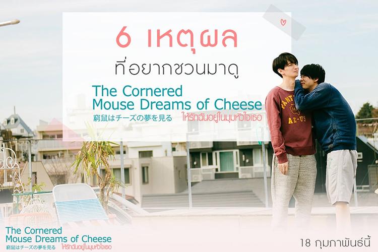 6 เหตุผลชวนมาดู The Cornered mouse dreams of cheese ให้รักฉันอยู่ในมุมหัวใจเธอ