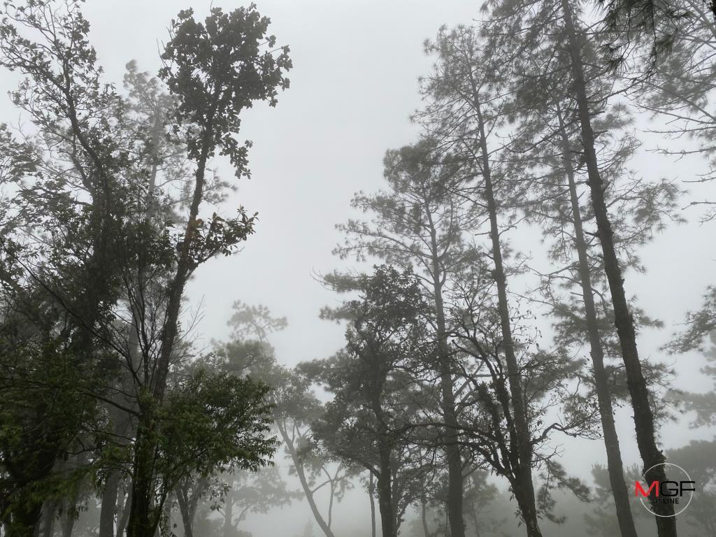 อุตุฯ เผย เหนือ-ตะวันออก-กลาง-กทม.-ปริมณฑลอากาศเย็น อุณหภูมิลดลง 1-3 องศา ใต้มีฝนบางแห่ง