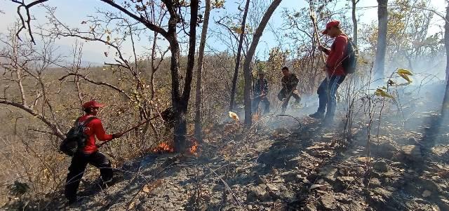 PM2.5คลุ้ง!ไฟป่าเหนือเขื่อนภูมิพล-อช.แม่ปิง ลามแรง ต้องระดมทั้ง จนท.เดินเท้า-ฮ.สกัด