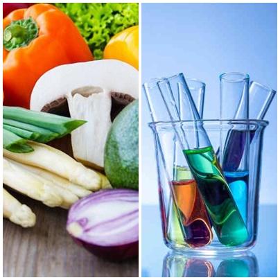 มจธ.เร่งพัฒนานวัตกรรมอาหารขั้นสูง เพื่อผู้บริโภคในอนาคต