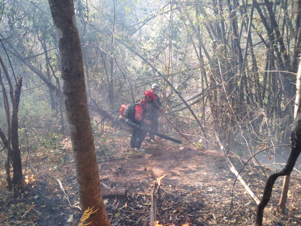 เชียงใหม่ระดม จนท.ดับไฟลอบเผาป่าหลังจุดความร้อนเพิ่ม ค่าฝุ่นพุ่งกระทบสุขภาพ-จ่องัด กม.ลงโทษเข้ม