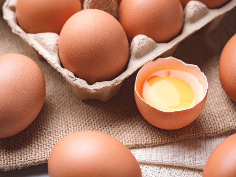 รัฐ ผนึกกำลังเอกชน สร้างเสถียรภาพราคาไข่ไก่ พยุงเกษตรกร