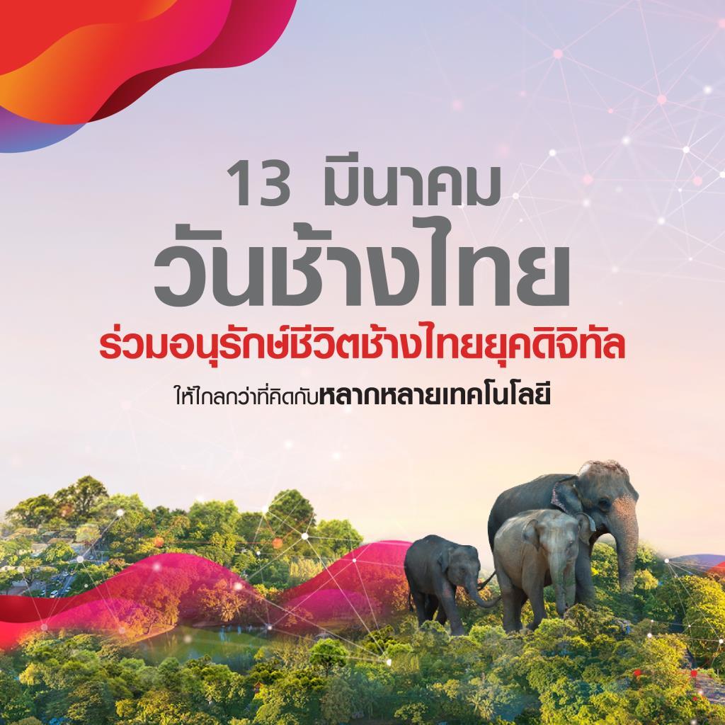 ทรูชู 5G อนุรักษ์ช้างไทยยุคดิจิทัล