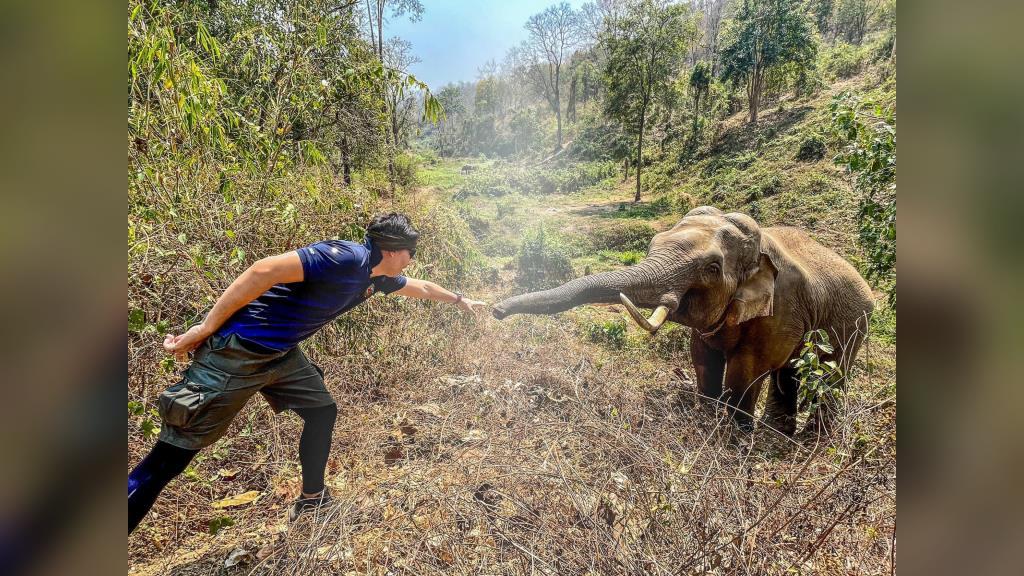 """หมอล็อต เผยเรื่องราวอบอุ่นหัวใจเมื่อครั้งเคยช่วยชีวิตช้างป่า """"ในวันช้างไทย"""""""