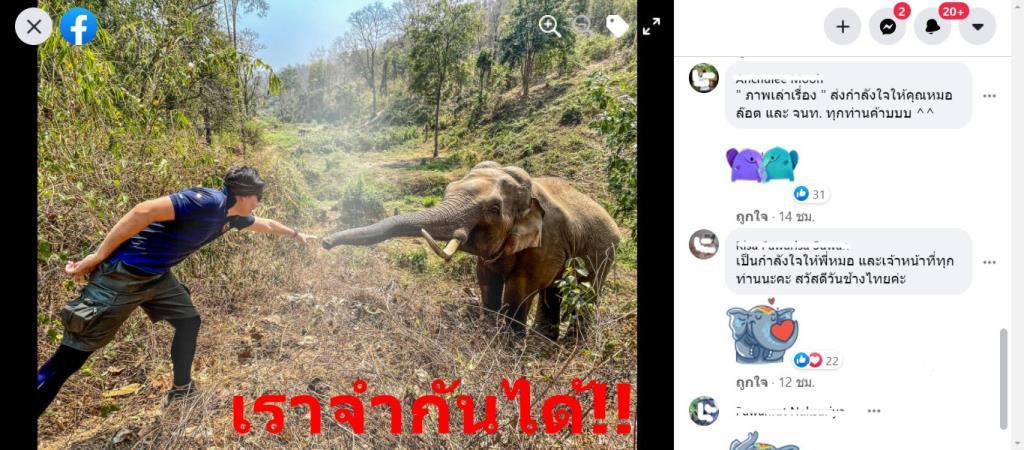 """""""หมอล็อต"""" เล่าถึงความประหลาดใจในวันช้างไทย"""