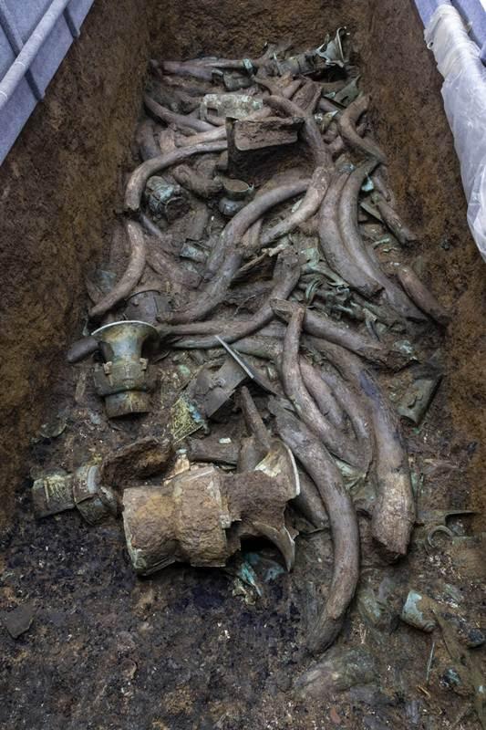 โบราณวัตถุและงาช้างจำนวนมากที่พบระหว่างการขุดค้นแหล่งโบราณคดีซันซิงตุยครั้งล่าสุด (แฟ้มภาพซินหัว)