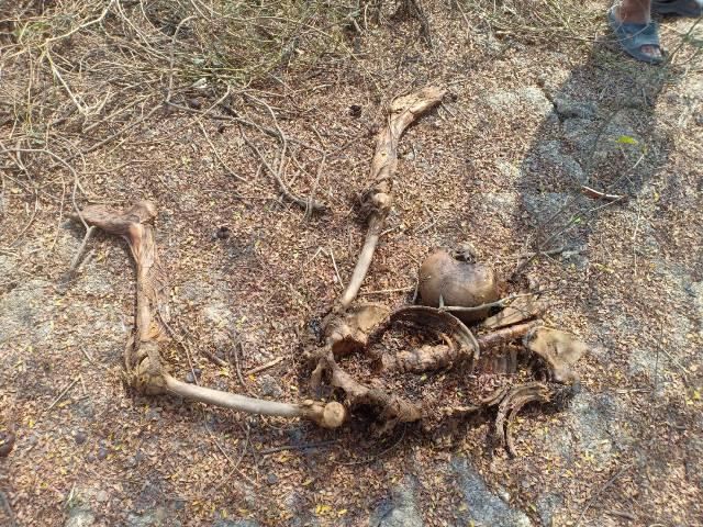 สยอง!หนุ่มติดเหล้าหายจากบ้าน 4 เดือน สุดท้ายเป็นศพแห้งๆเหลือแต่โครงกระดูก