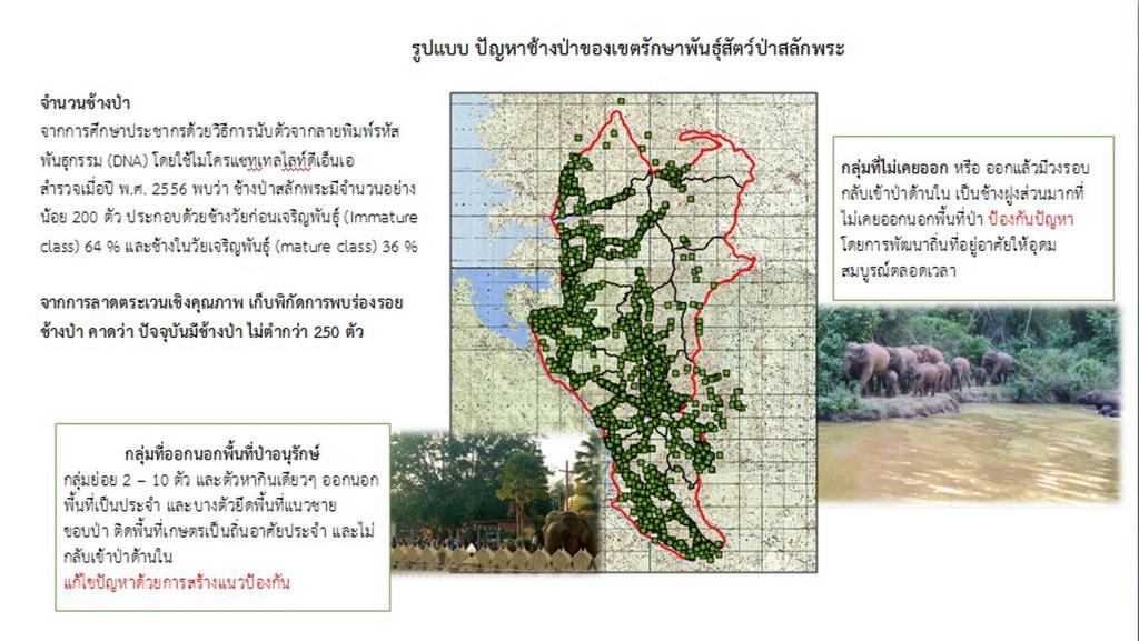 เขตรักษาพันธุ์สัตว์ป่าสลักพระ ของบกว่า 188 ล้านบาท ทุ่มแก้ปัญหาช้างป่าออกนอกพื้นที่ป่า