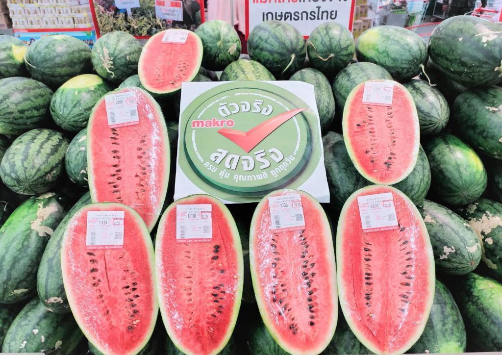 แม็คโคร สนับสนุนเกษตรกรภาคใต้ หนุนชาวสวนแตงโม บ้านบุโบย รับซื้อเข้าทุกสาขา