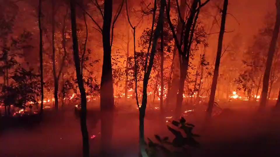 """ไฟไหม้ป่าดอยสุเทพ""""บ้านขุนช่างเคี่ยน"""" จนท.ระดมดับทั้งคืนวอด120ไร่"""