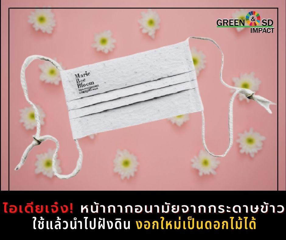 ไอเดียดี!! หน้ากากอนามัยจากกระดาษข้าว สามารถงอกใหม่เป็นดอกไม้ได้