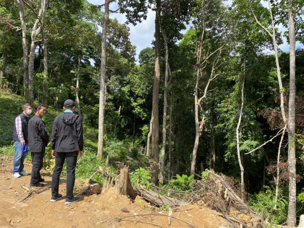 ดีเอสไอ ลุยสอบพื้นที่บุกรุกเขตป่าสงวนแห่งชาติ ป่าเทือกเขานาคเกิด จ.ภูเก็ต พิจารณาเป็นคดีพิเศษ