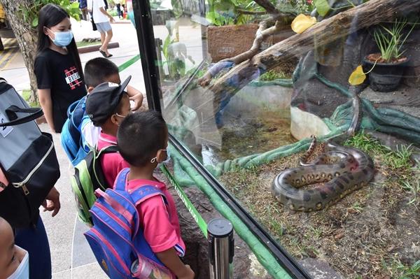 """สวนสัตวฺเปิดเขาเขียว เปิดส่วนใหม่ """"ดินแดนลี้ลับ สัตว์ป่าอเมซอน"""" รับเทศกาลสงกรานต์"""