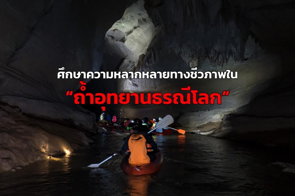 """ม.อ.ศึกษาความหลากหลายทางชีวภาพใน """"ถ้ำอุทยานธรณีโลก"""" จ.สตูล หวังส่งเสริมการท่องเที่ยว"""