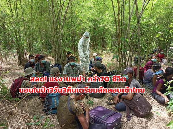 จับอีกชาวเมียนมา 72 ราย  สุดทรหด นอนในป่าบนเขานาน 3 วัน หวังลอบเข้าทำงานในไทย
