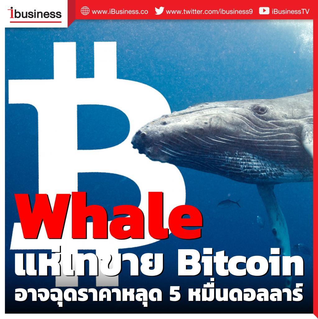 Data Analytics ชี้ แรงกระเพื่อมของ Whale เทขาย Bitcoin อาจฉุดราคาหลุด 5 หมื่นดอลลาร์