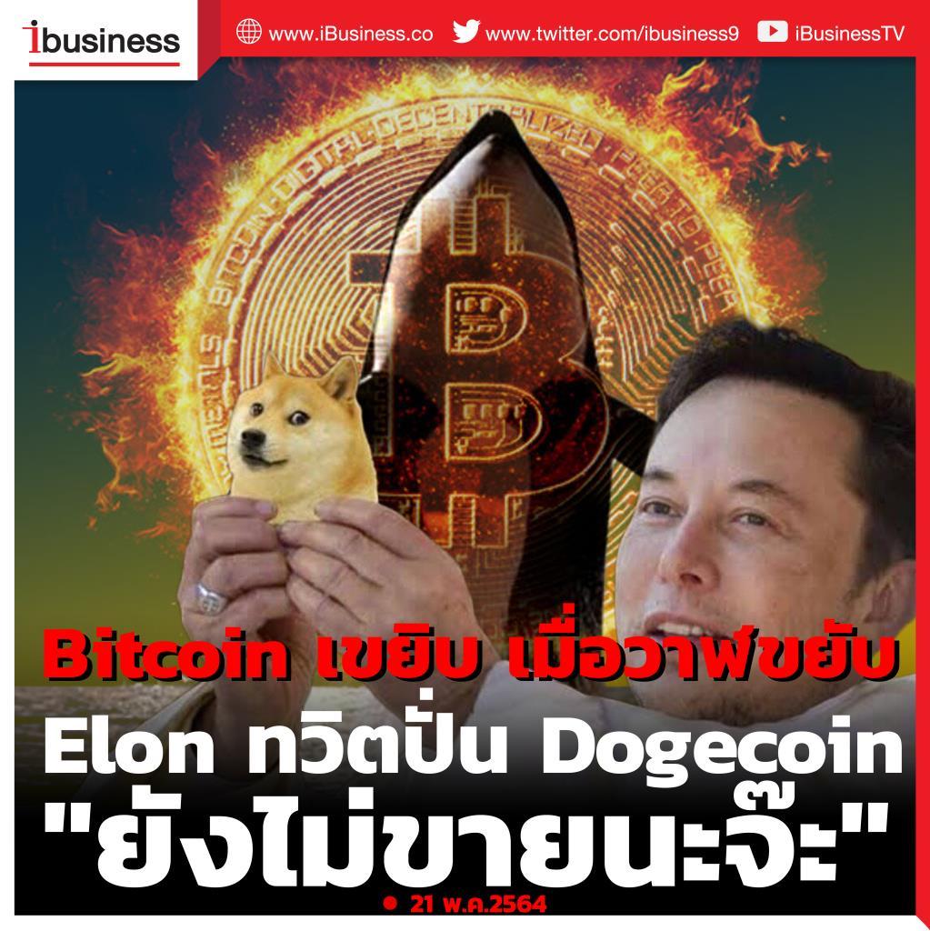 "Bitcoin เขยิบ เมื่อวาฬขยับ - Elon ทวิตปั่น Dogecoin ""ยังไม่ขายนะจ๊ะ"""