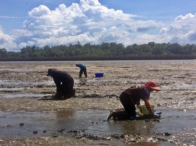 ซีพีเอฟ ร่วมฟื้นฟูความหลากหลายทางชีวภาพ สร้างอาหารมั่นคง เพิ่มรายได้ชุมชนท้องถิ่น
