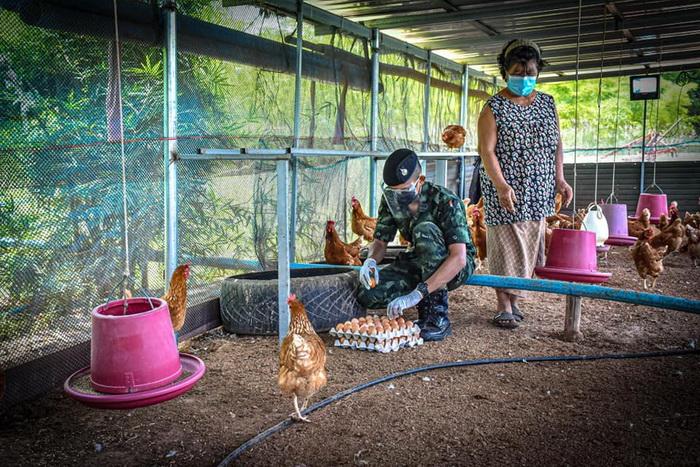 ค่ายพระยอดเมืองขวางช่วยซื้อไข่จากเกษตรกรแก้ปัญหาขายไม่ออกช่วงโควิดระบาด