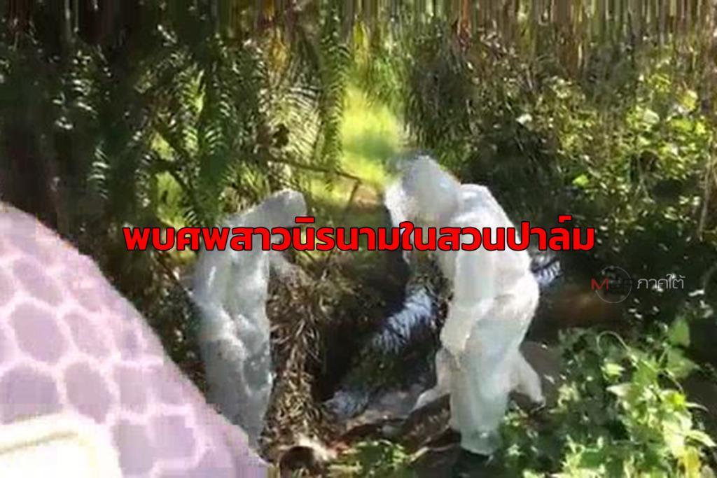 ผงะ! พบศพสาวนิรนามสภาพเน่าเฟะข้างท่อระบายน้ำในสวนปาล์มท่าศาลา จนท.เร่งสอบหาตัว-สาเหตุการตาย