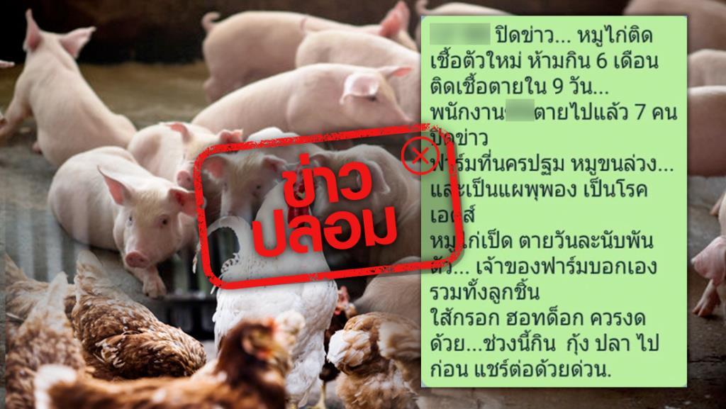 ข่าวปลอม! หมู-ไก่ เป็นโรคเอดส์ ห้ามกิน 6 เดือน