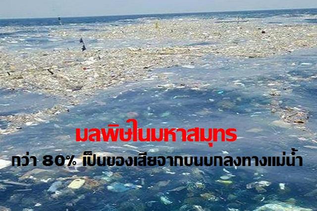 """วันมหาสมุทรโลก รู้หรือไม่! มลพิษในมหาสมุทร กว่าร้อยละ 80 เป็นของเสียจากบนบก """"ผีมือมนุษย์"""""""